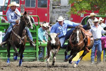 blog (6x4@300) Yoko 120 Livermore Rodeo, Steer Wrestling 7, Tom Lewis (10.2 Lehi, UT) 2_DSC7466-6.11.16.(5).jpg