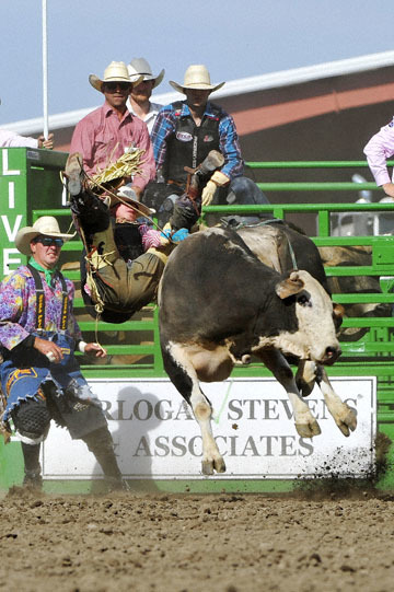 blog (4x6@300) Yoko 122 Livermore Rodeo, Bull Riding, Dustin Marberry (79.5 Porterville, CA) 2_DSC7935-6.11.16.(7).jpg