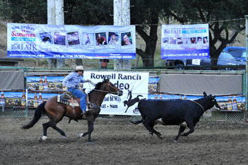 blog (6x4@300) Yoko 80 Rowell Ranch Rodeo, Wild Cow Milking, Ethan Lemmons, CA_DSC8983-5.20.16.(6).jpg