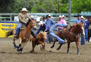 blog (6x4@300) Yoko 76 Rowell Ranch Rodeo, Slack, Steer Wrestling, Ryan McKenzie (NT), Hazer-Josh Garner_DSC8188-5.20.16.(2).jpg