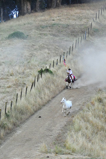 blog (4x6@300) Yoko 79 Rowell Ranch Rodeo, Flag, CA_DSC8647-5.20.16.(5).jpg