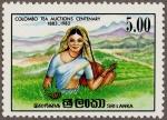 スリランカ・茶のセリ100年