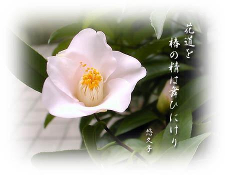 wabisuke_3_19hagoromo.jpg