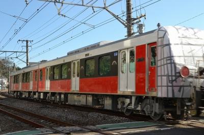 DSC_8616.jpg
