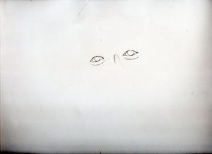 img806.jpg