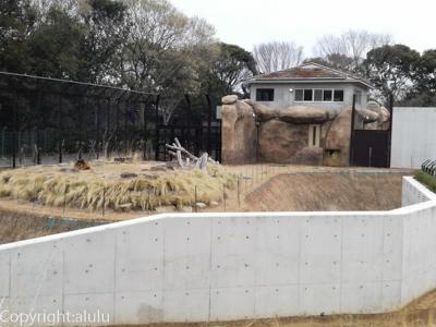 ライオン 京葉学院ライオン校