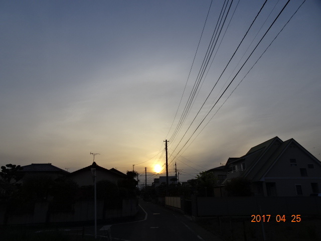 2017_04250171.jpg