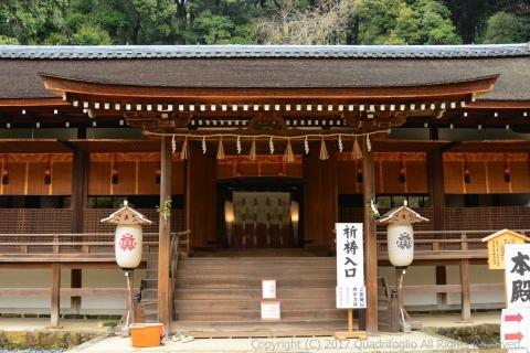 20170407_Uji_Ujigamijinja_D7100 (8)
