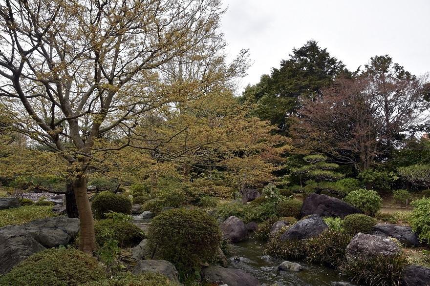 大仙日本・春 (2)