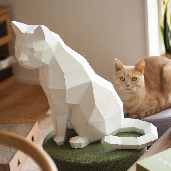 猫のディスプレイ