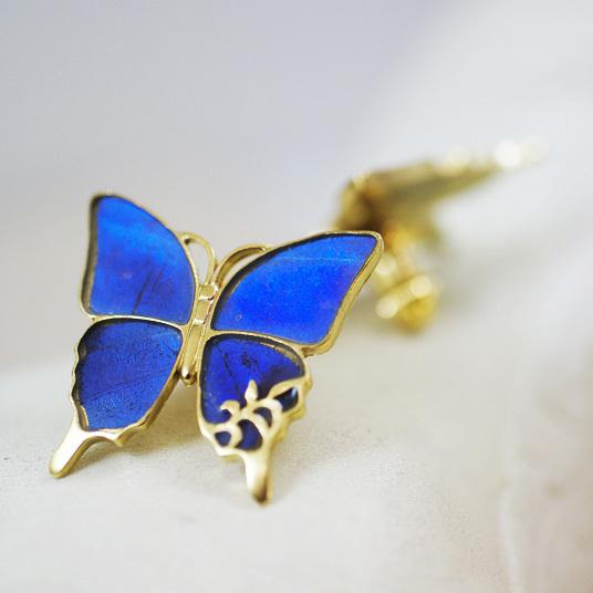 モルフォ蝶のブローチ
