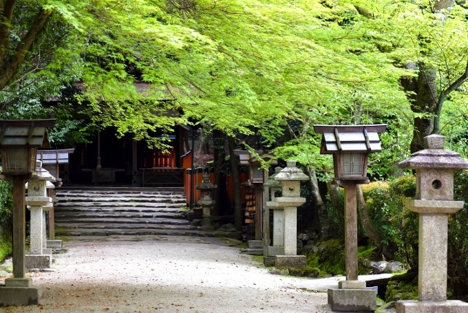 大田神社参道