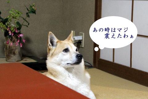 s-kikusui170407-IMG_5538