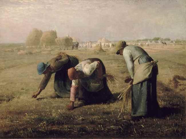 gleaning1.jpg