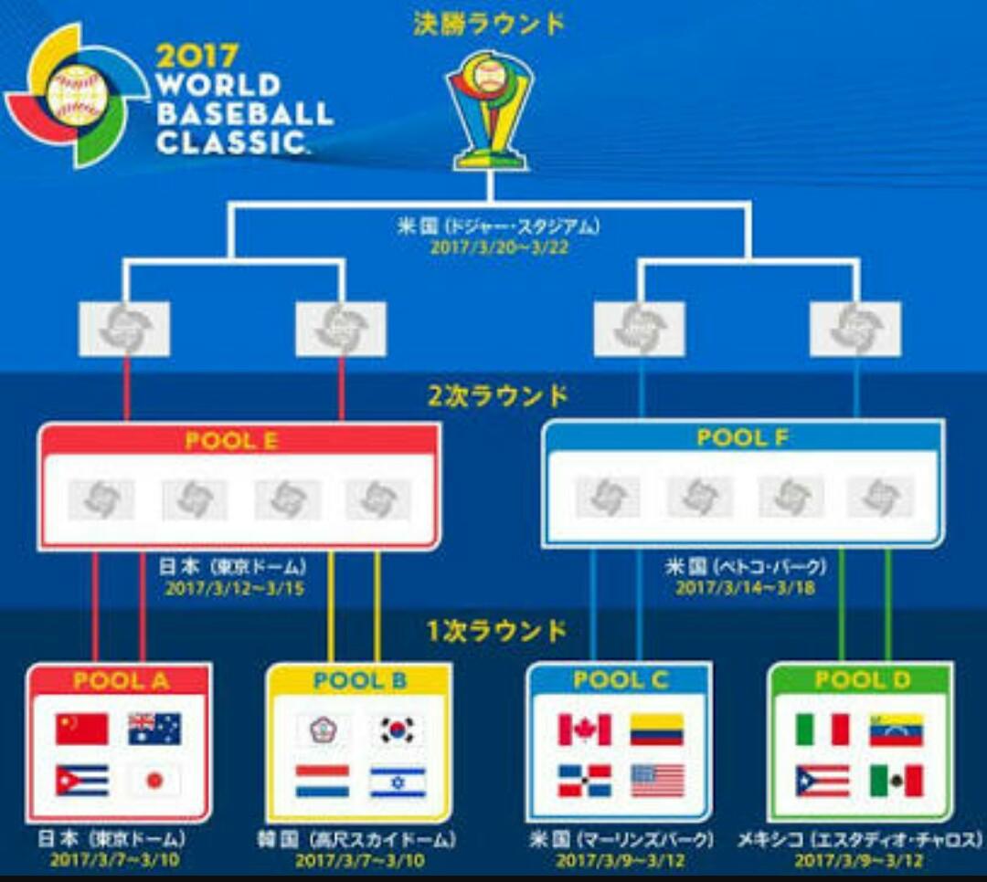 WBC 準決勝日本のオッズは?