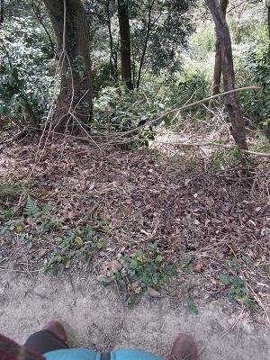 塚山公園3