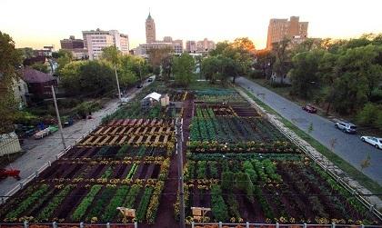 デトロイト市郊外の自給自足農地