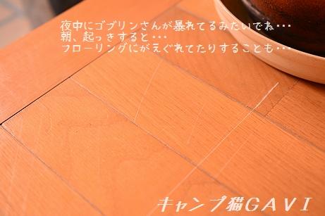 170210_5423.jpg