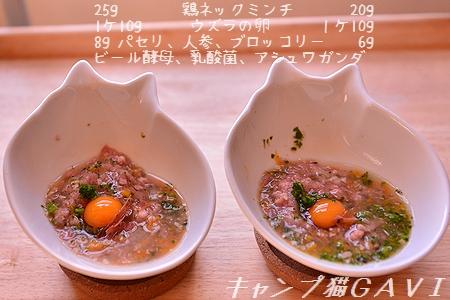 170303_6032.jpg
