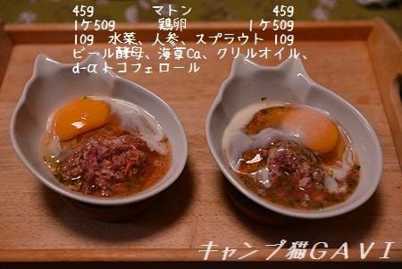 170307_6172.jpg