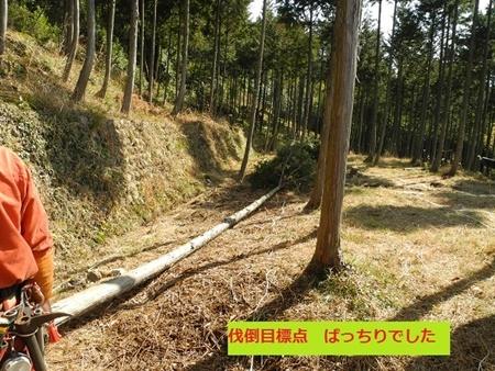 DSCN0123X.jpg
