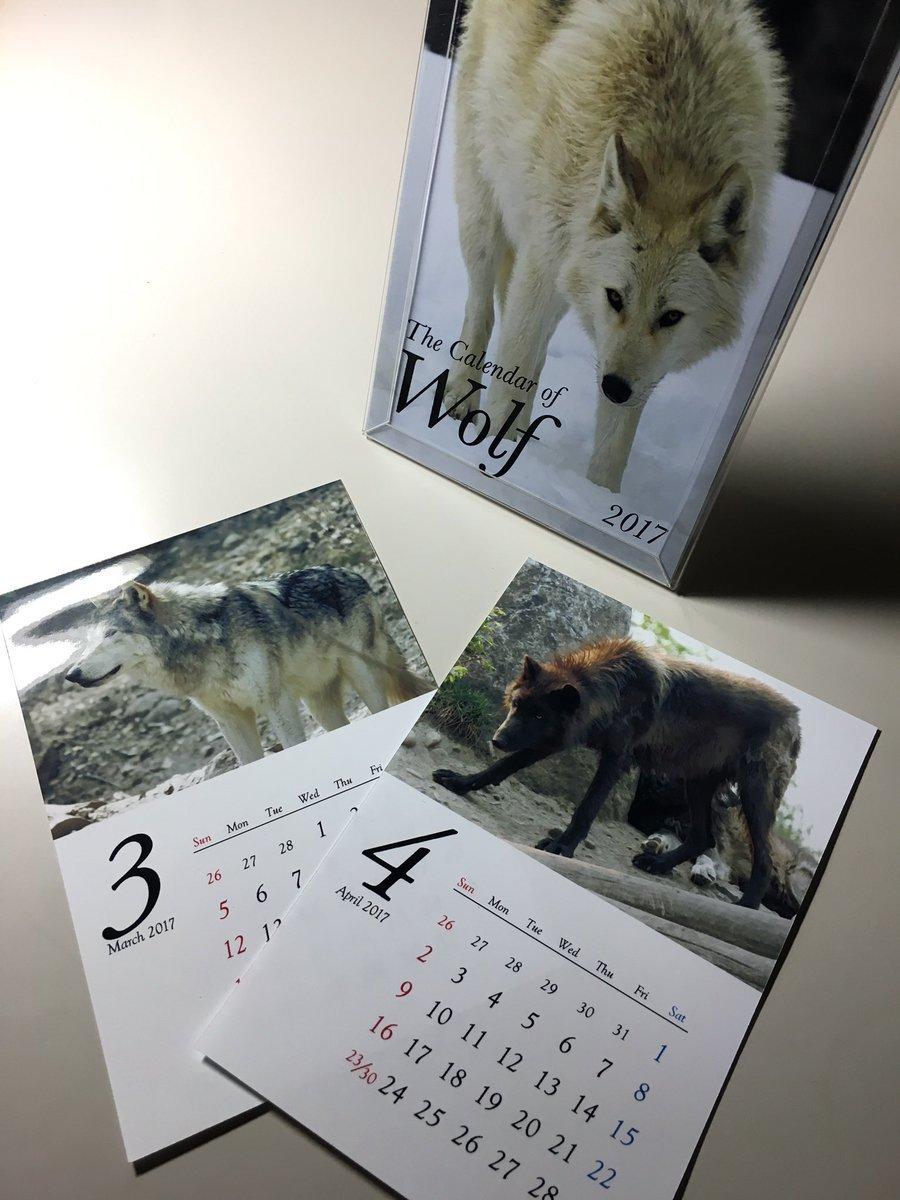 2017_WolvesMe_05.jpg