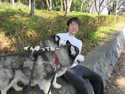 IMG_4345y_2017040523112987e.jpg