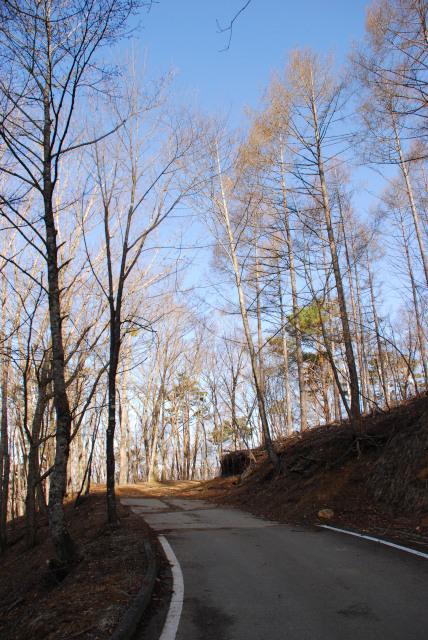 瑞牆山_登山口まで林道を歩く