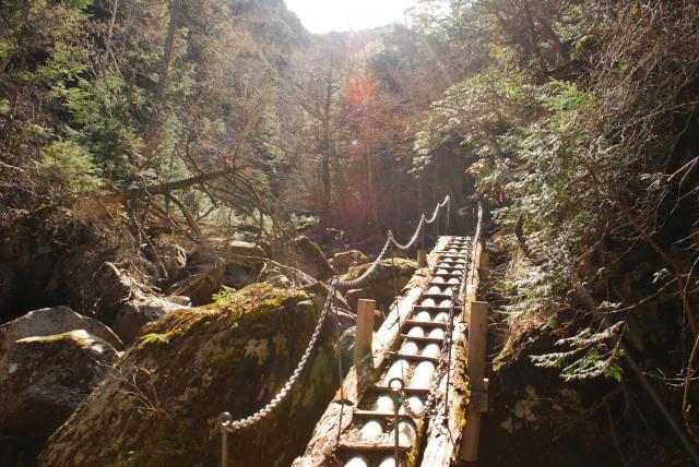 みずがきやま_不動沢_細い木の橋を渡る