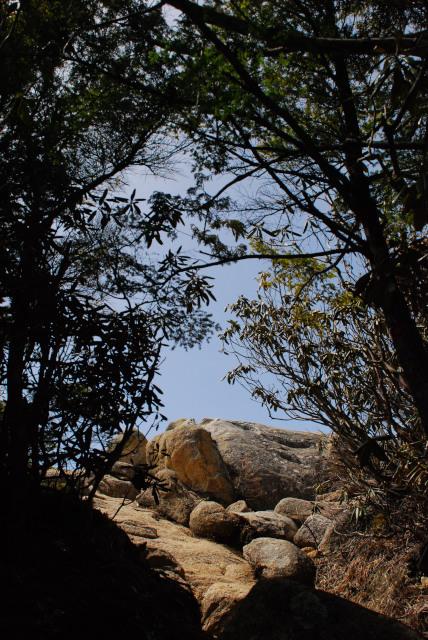 瑞牆山頂_樹林帯から急に視界が開けた