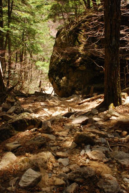 瑞牆山の登山道_瑞牆山荘コース_巨岩を支える小さなつっかえ棒達