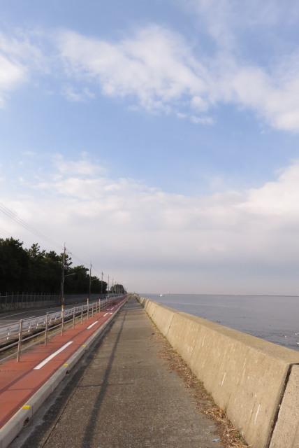 兵庫県尼崎市_武庫川河口