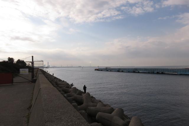 兵庫県尼崎市_武庫川_魚釣り公園_大阪湾