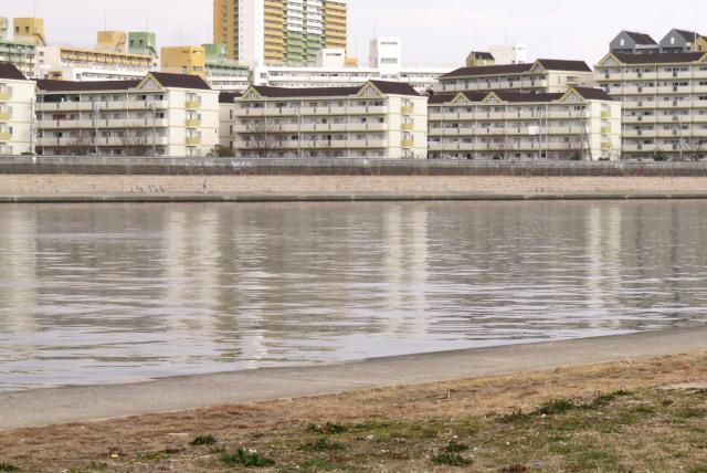 武庫川の水面と対岸に並ぶ団地