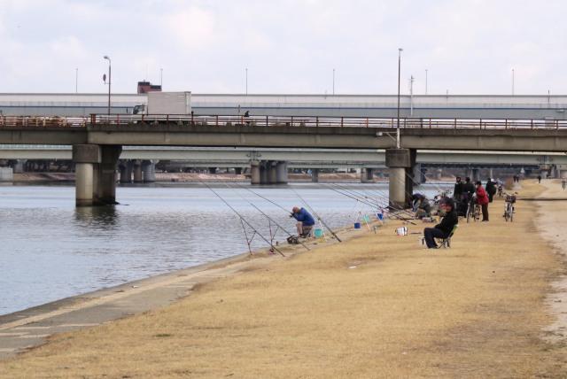 武庫川の河川敷に並ぶ釣竿
