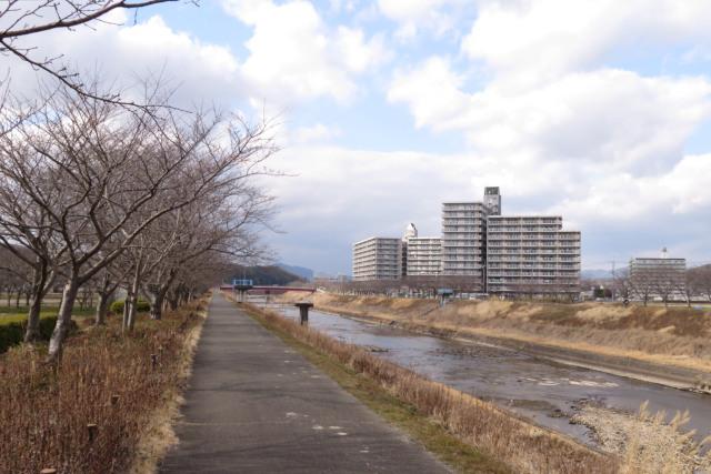 兵庫県三田市_桜づつみ回廊