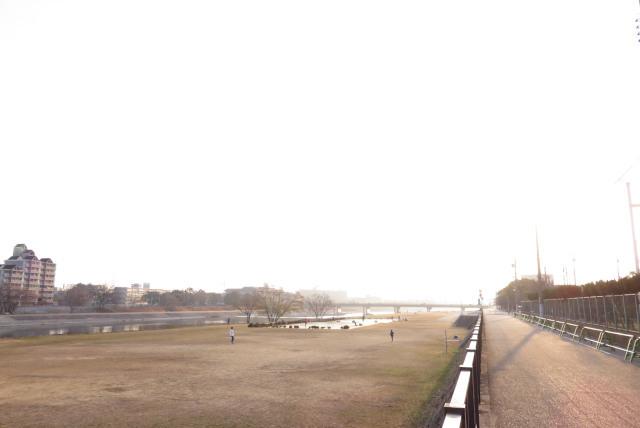 武庫川の河川敷を振り返る_水面に光が反射