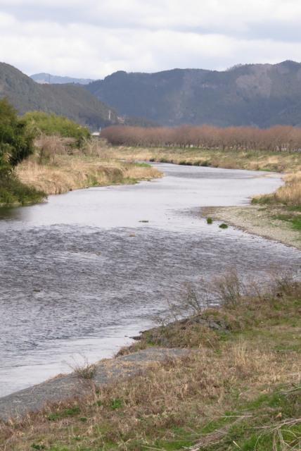 氷上_加古川の水面