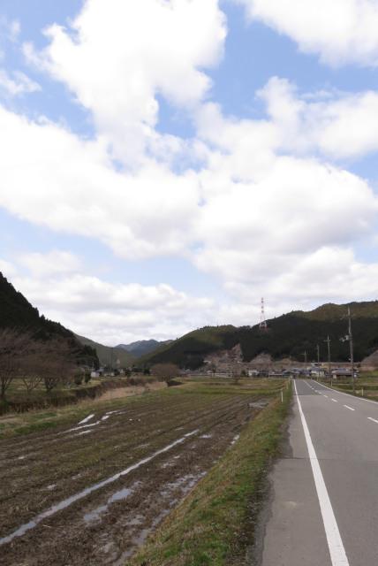 遠坂川_桜づつみ回廊