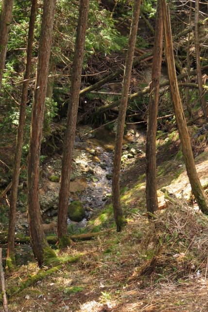遠坂峠_下に遠坂川の源流