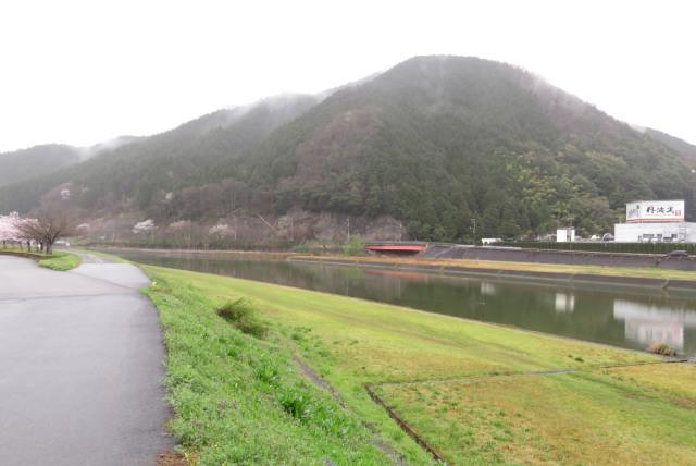 和田山_雨の円山川の堤防