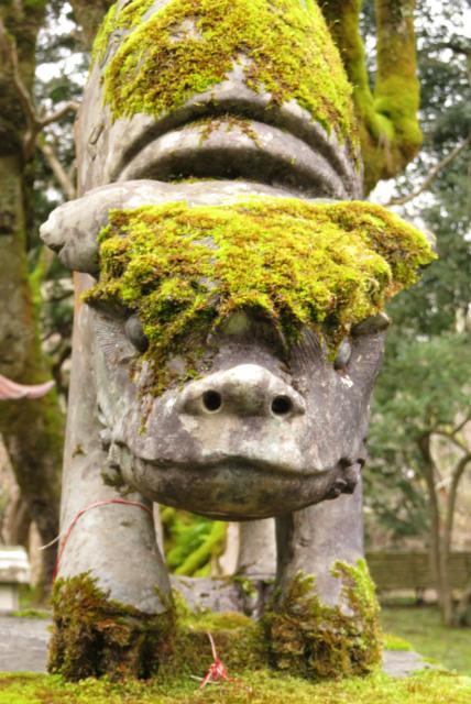 養父神社の狛犬
