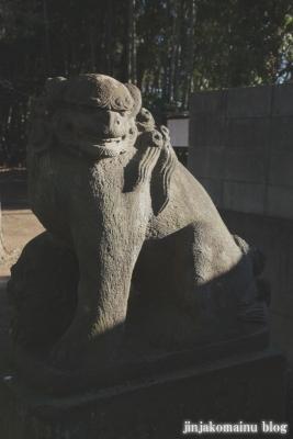 久伊豆神社(蓮田市駒崎)15