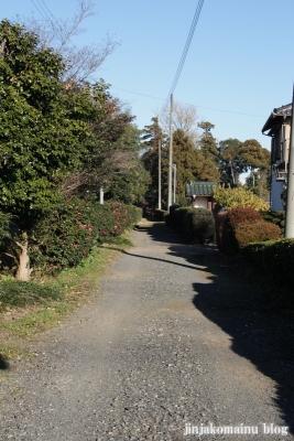 久伊豆神社(蓮田市井沼)4