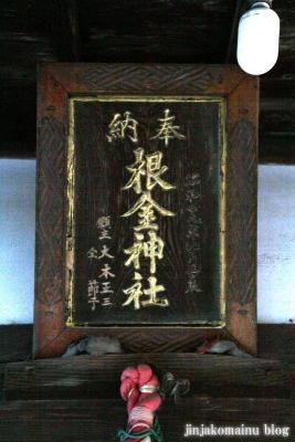 根金神社(蓮田市根金)2