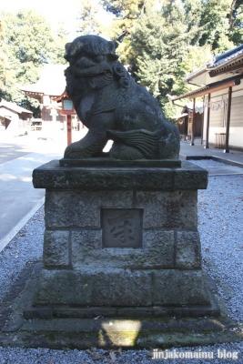 氷川神社(北足立郡伊奈町本町)20
