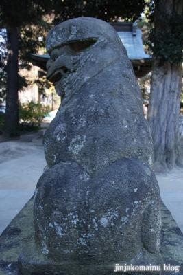 氷川神社(北足立郡伊奈町本町)23