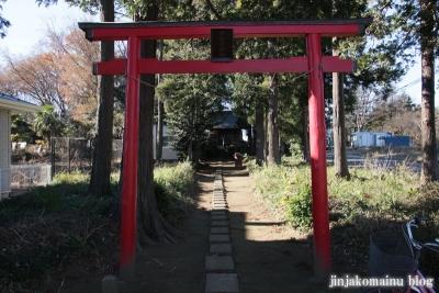 伊夜彦神社(蓮田市閏戸)3