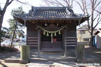 須賀神社(蓮田市上)11