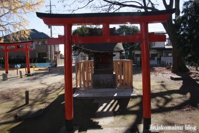 須賀神社(蓮田市上)16